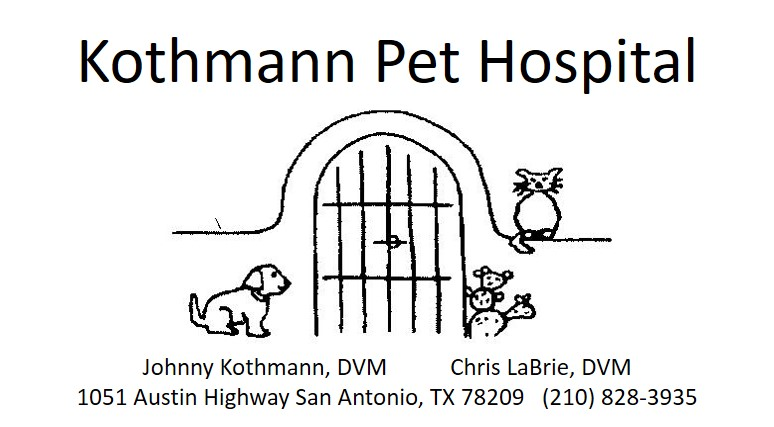 Kothmann Pet Hospital